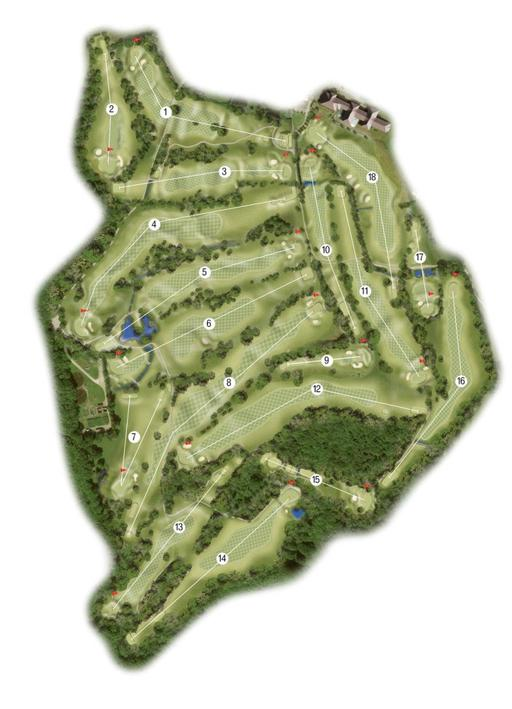 The Dale Hill - Old Course Map